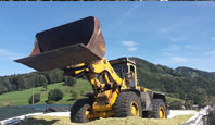 heading_silage